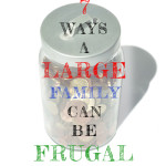 large_family_frugal